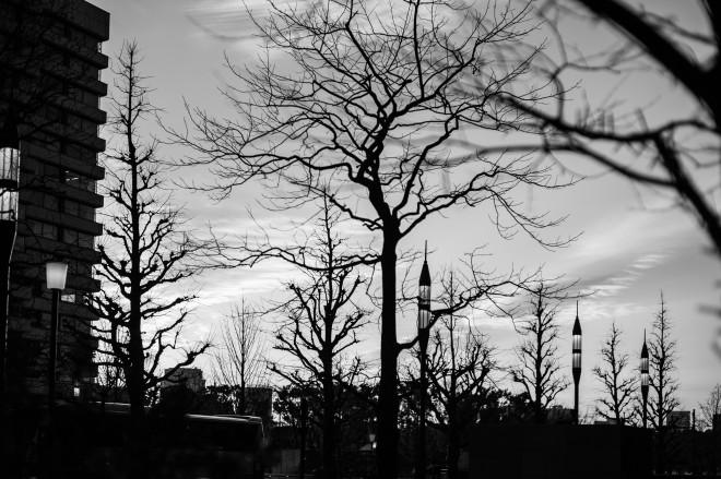 Tokyo Dusk - 12 January 2014