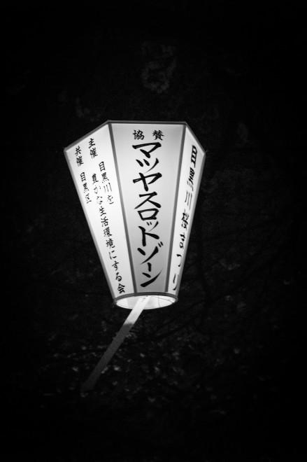 Hanami 2014-1002033