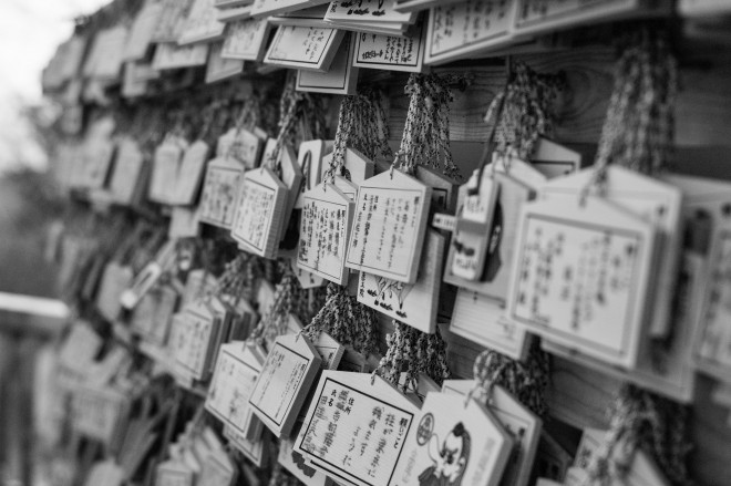 Takao-san March 2014-1001981