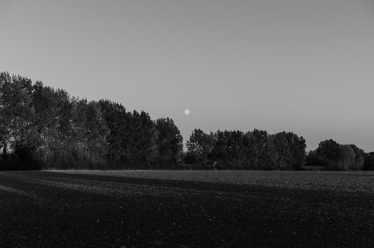 suffolk-evening-1012760