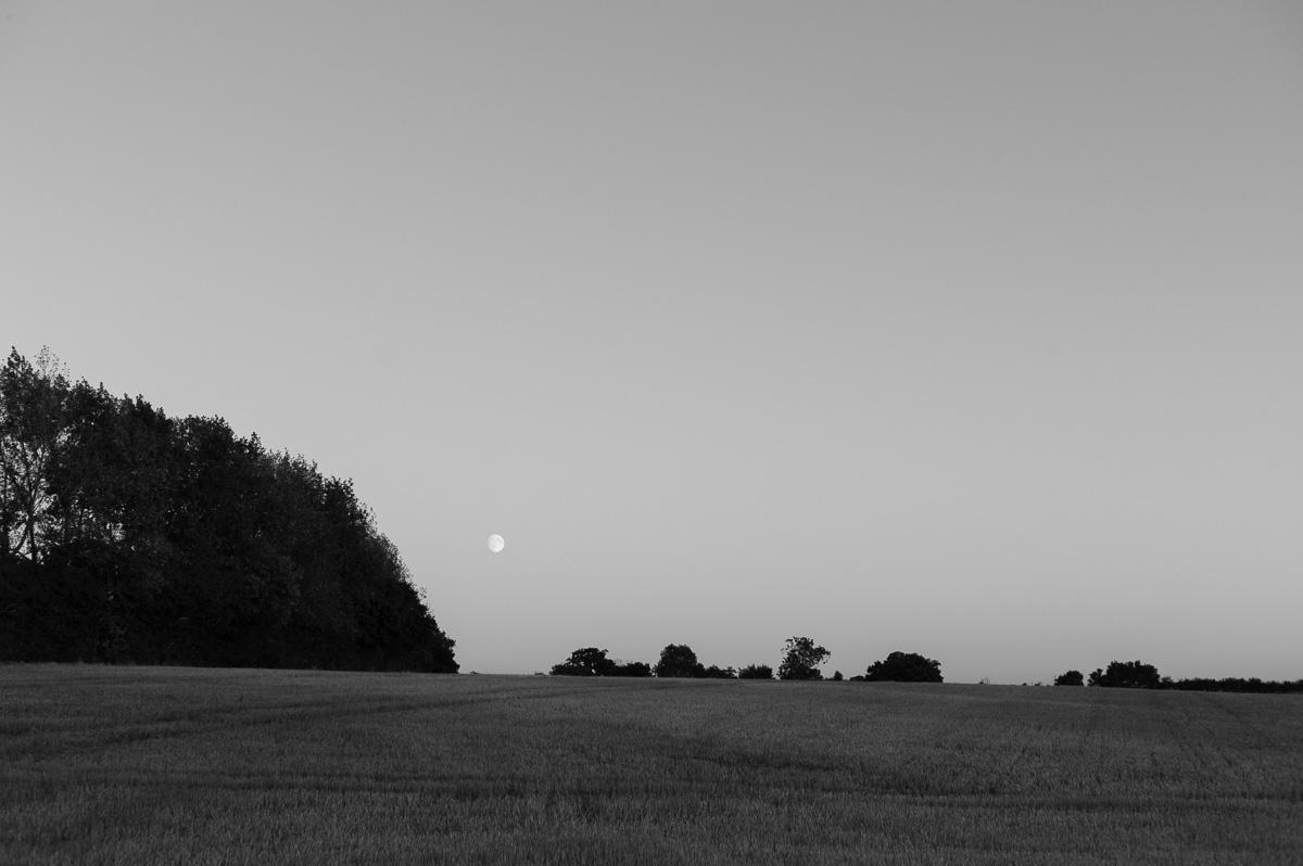 suffolk-evening-1012765